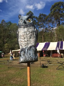 An owl decorating the list field. Photo by TH Lady Ceara Shionnach, June 2014